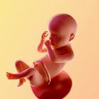 30 weken zwanger - afbeelding van de baby